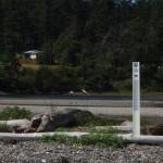 Landing NE of boat ramp