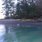 A State Park buoy lies off landing area