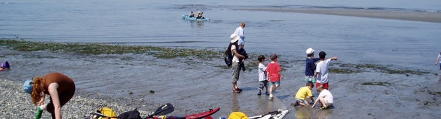 Washington shore